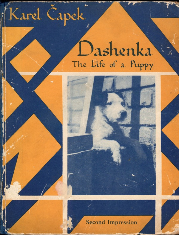 Image for DASHENKA: THE LIFE OF A PUPPY