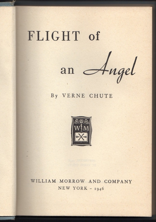 Image for FLIGHT OF AN ANGEL
