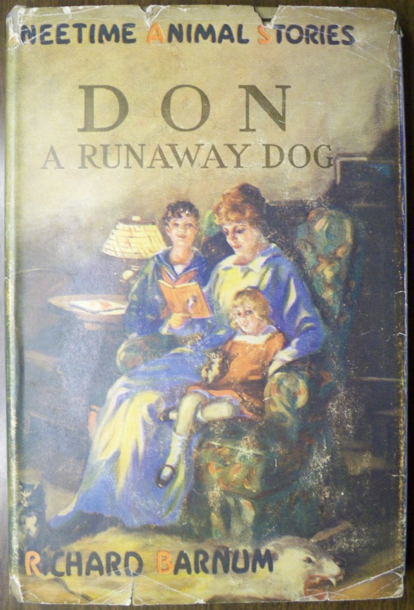 Image for DON: A RUNAWAY DOG (KNEETIME ANIMAL STORIES)